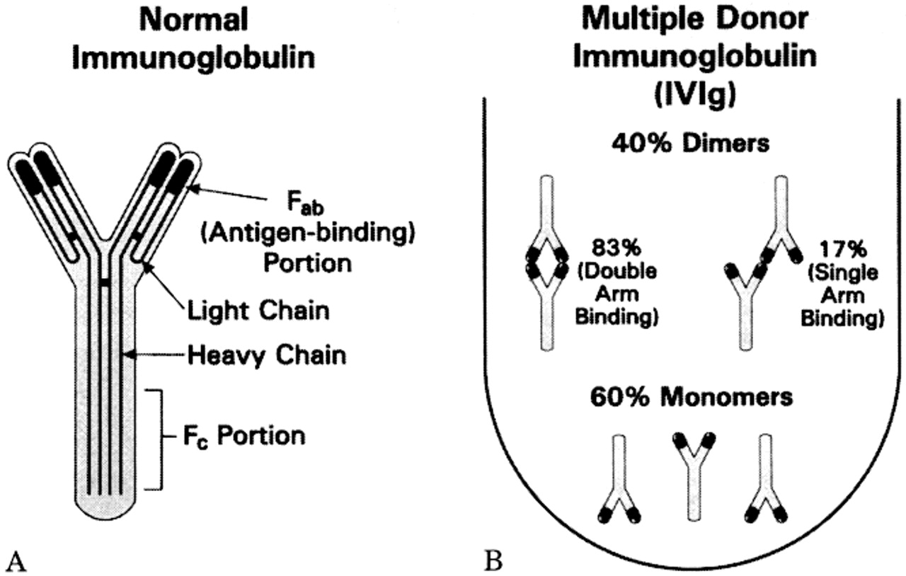Mechanism of Action of Intravenous Immunoglobulin and