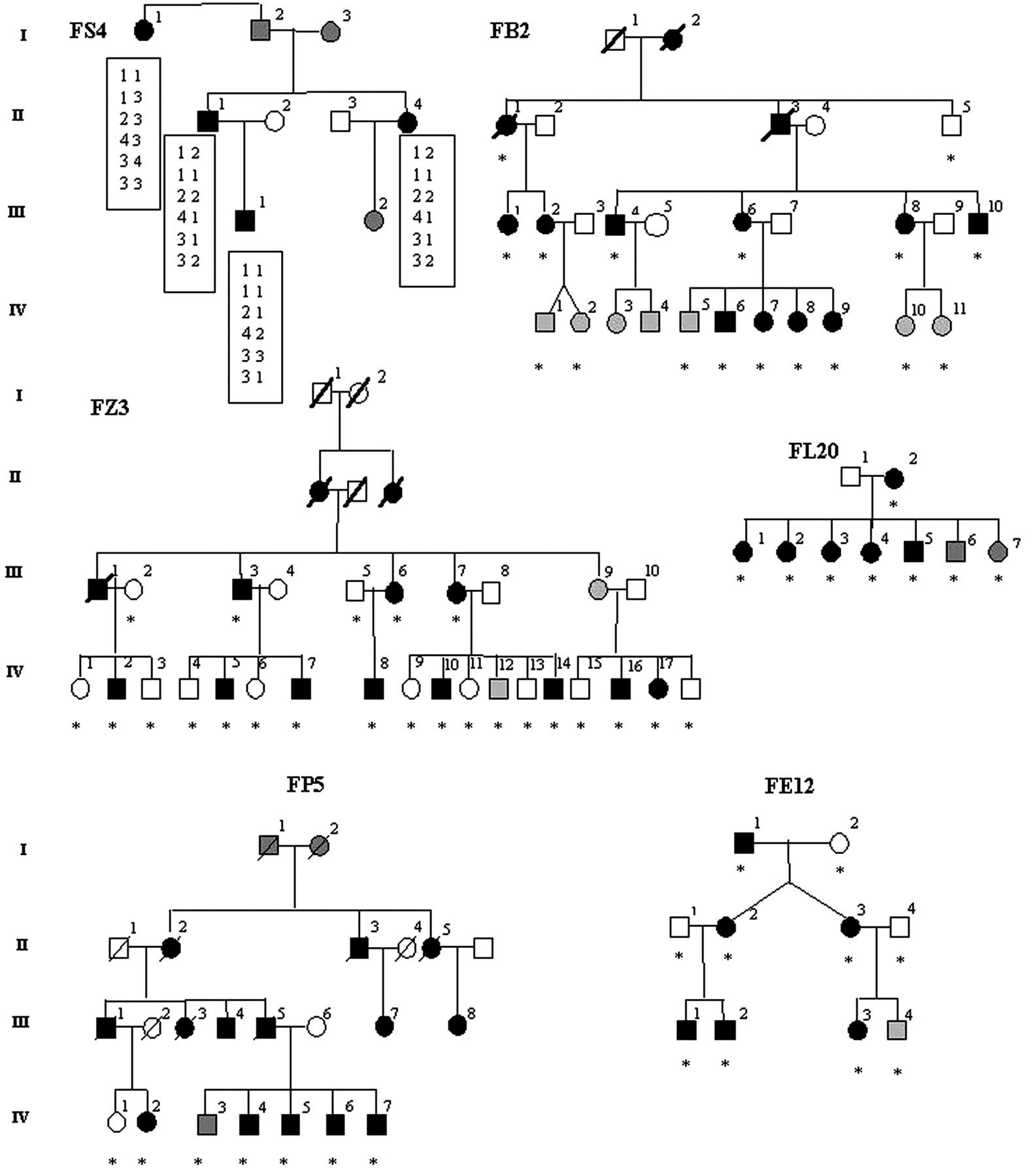 Genetic heterogeneity in familial idiopathic basal ganglia