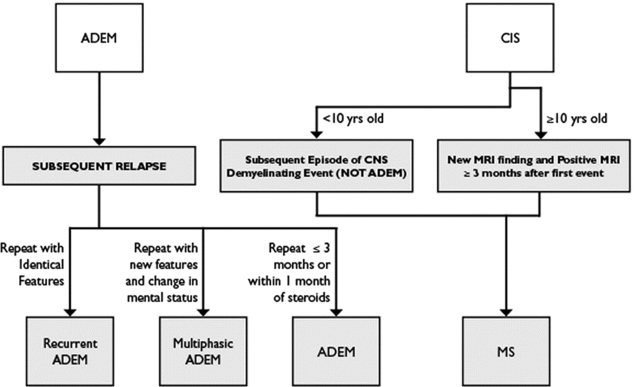 Consensus definitions proposed for pediatric multiple sclerosis and download figure open in new tab download powerpoint figure flow chartdecision tree nvjuhfo Choice Image