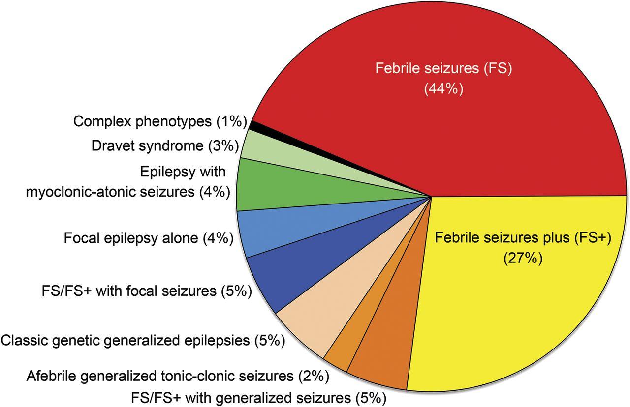 Genetic epilepsy with febrile seizures plus | Neurology