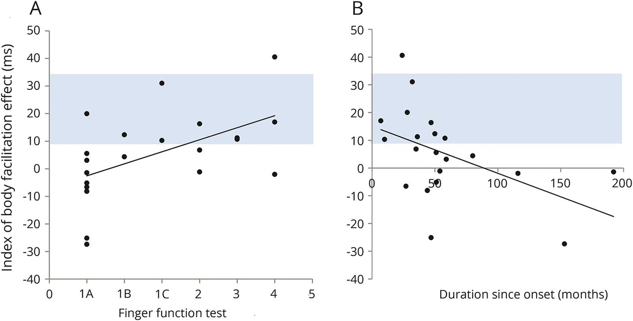 Time Dependent Decline Of Body Specific Attention To The Paretic