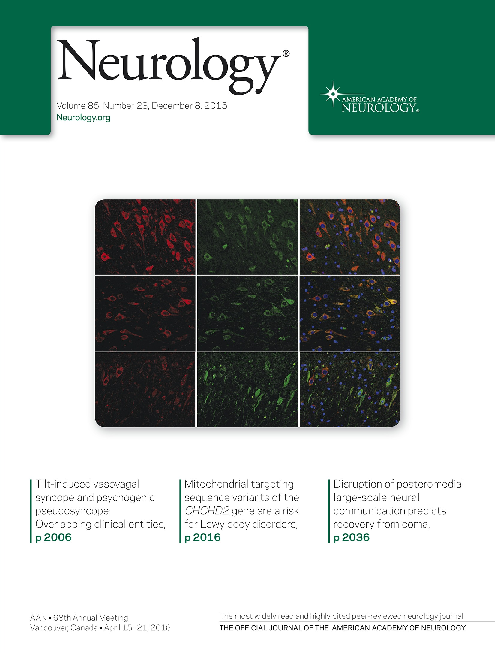 Disruption of posteromedial large-scale neural communication